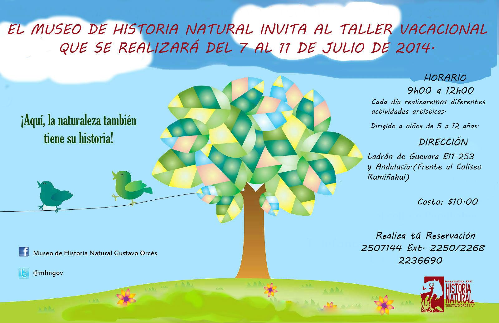 Taller_vacacional_2014