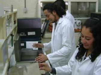 fiqadecabbromatologiaweb